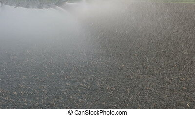 Plow field watering - Watering of cultivated field in early...