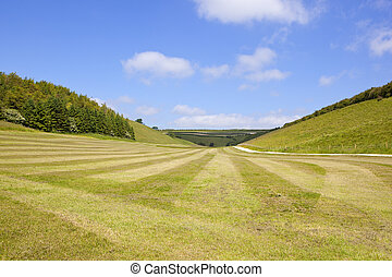 yorkshire wolds farmland - a rolled meadow with patterns...