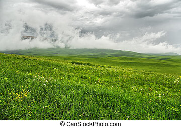 Pre-storm weather in the field. Beautiful dramatic landscape with low dark clouds and a green field