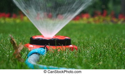 lawn watering sprayer
