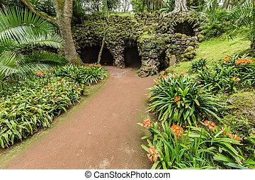 Antonio Borges Botanical Garden in Ponta Delgada. Ponta...