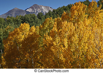 bald peaks graced by gold and green - graced in orange...