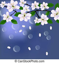 Cherry Flowers card with waterdrops background for birthday,...