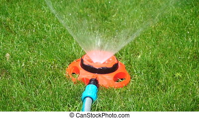 watering sprayer on a grass - close up of lawn watering...