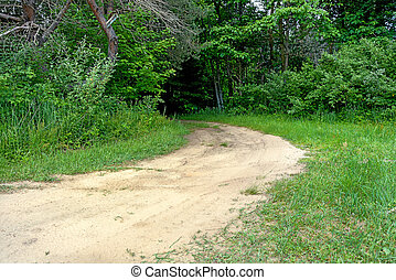 dirt road in forest - curving rural dirt road into green...