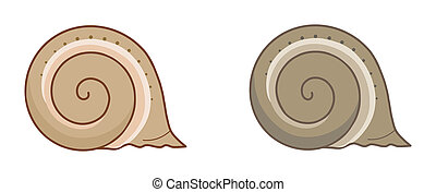 Two Snail Shells - Illustration of two snail shells on a...