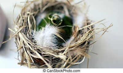 two wedding rings in the nest