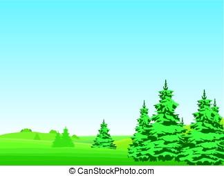 green forest - Landscape, summer forest