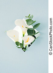 bouquet of white callas and eucalyptus in frame on blue...