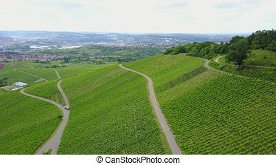 flight over vineyard Kappelberg near Stuttgart in Germany