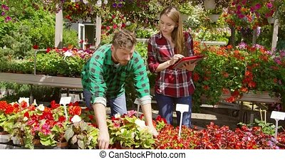 People working in garden together - Professional man and...