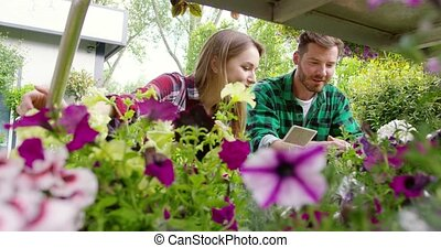 Cheerful man and woman in garden - Smiling young man and...