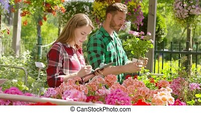 Man and woman working with garden flowers - Man standing...