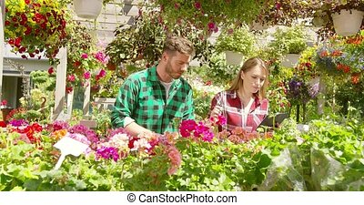 Two florists in garden - Male and female professional...