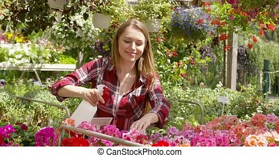 Woman spraying water on flowers - Horizontal outdoors shot...