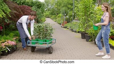 Woman loading wagon with plants - Female professional...