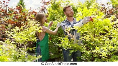 Cheerful people working with plants - Cheerful gardeners man...