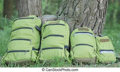 Green backpacks of different sizes stand on the grass near...