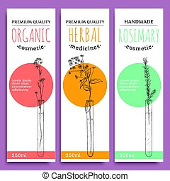 Sketch herbal vertical banners with organic herbs rosemary valuable for human health vector illustration