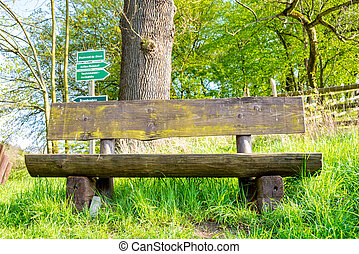 Park bench on the hiking trail