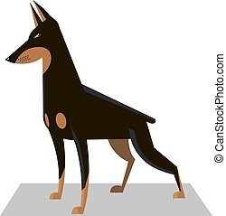 Doberman in a classic position on a white background,...