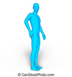 Male body