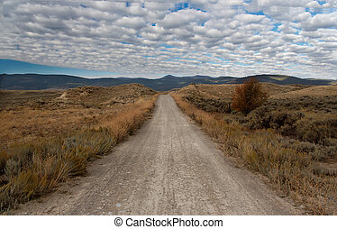 Unpaved Road in Montana