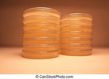 Laboratory plates of agar - Plates of agar for clinical and...