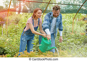 Gardeners watering plants in hothouse - Male and female...