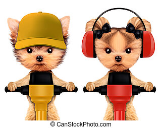 Funny couple of animal with jackhammer - Funny couple of...