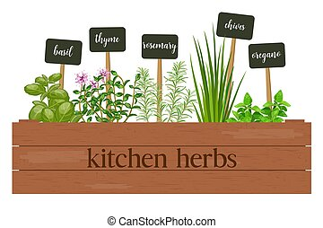Wooden crate of farm fresh cooking herbs with labels in...