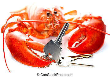 Real estate agent - Lobster holding the keys in the hand....