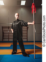 Wushu fighter poses with lance, martial arts. Man in black...