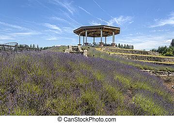 Laverder farm and gazebo Oregon.