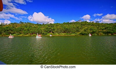 Tourist Swan-like-boats on Wide Lake Forestry Bank in Park -...
