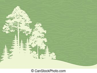 Forest Landscape, Coniferous and Deciduous Trees Silhouettes...
