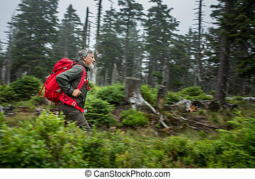 Active senior hiking in high mountains (motion blur...