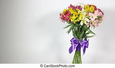 colorful flowers bouquet of alstroemeria on white...