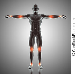 3D male figure with joints highlighted - 3D render of a male...