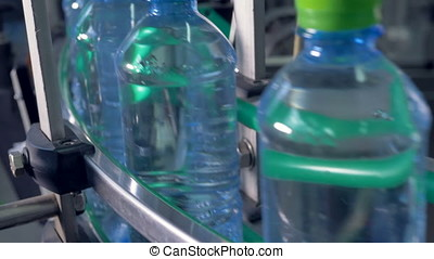Green-capped bottles moving for packaging. - Close up of...