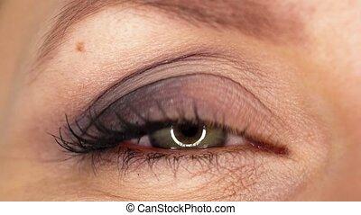 Macro Close-up eye blinking - Beautiful female eye close-up...