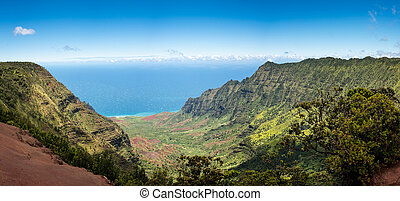 Panoramic view of Kalalau valley Kauai - High definition...