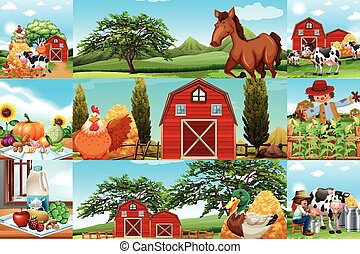 Farm scenes with many animals and farmers