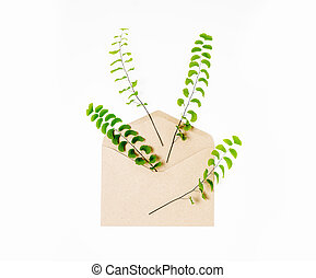 green fern leaves on the white background - envelope and a...