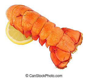 Cooked Lobster Tail On White - Cooked lobster tail isolated...
