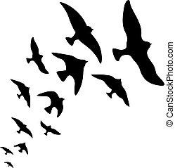 Vector silhouette flock of flying birds design on white background