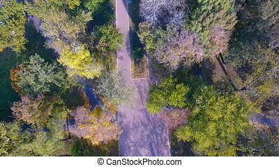 Aerial footage of autumnal nature scenery in city park....