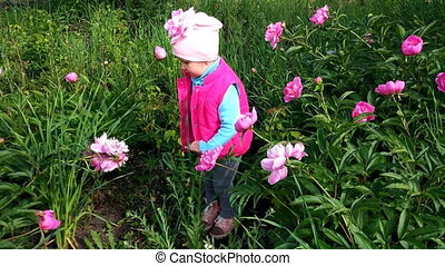 A little girl in the garden admires flowers.