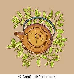 marjoram tea in teapot