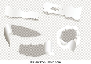 ripped of paper on a transparent background, vector and illustration